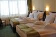 Hotel Fantanita Haiducului din Bradu (11)
