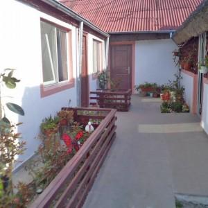 Casa Daria din Dunavatul de Jos