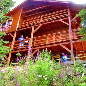 Cabana Iris din Belis