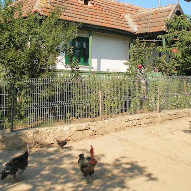Casa la Bunica din Enisala